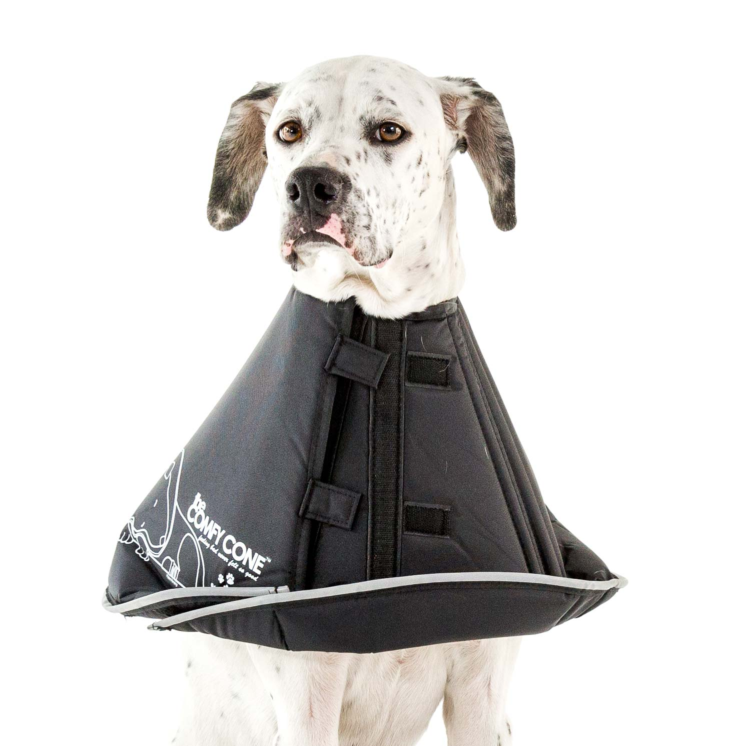 Features of the Comfy Cone - Recovery & Health Aid for Pets